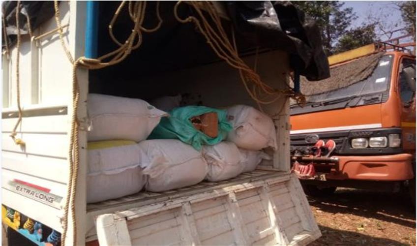 Khabar East:600-kg-of-cannabis-seized-in-police-raid-driver-arrested