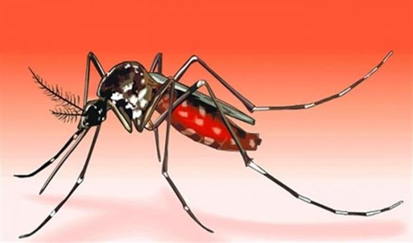 Khabar East:Bhubaneswar-reports-seasons-first-dengue-death
