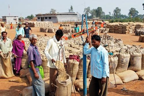 Khabar East:New-record-of-paddy-purchase-made-in-Chhattisgarh-Most-paddy-purchased-after-formation-of-state